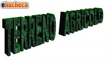 terreno agricolo a..