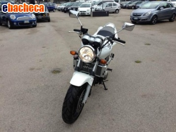 Anteprima Honda Hornet 600