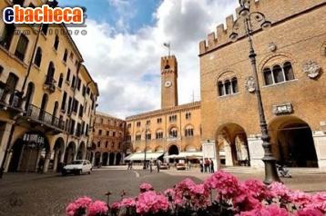 Anteprima Negozio a Treviso di 100…