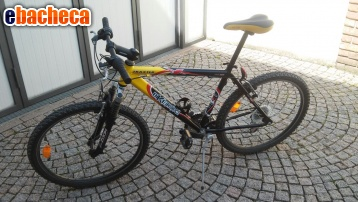 Anteprima Bicicletta Mountain Bike