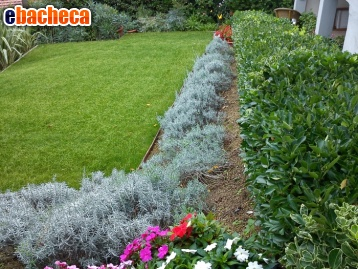 Anteprima Giardiniere