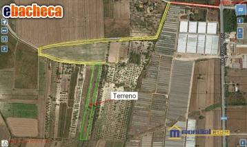 Anteprima Azienda Agricola in…