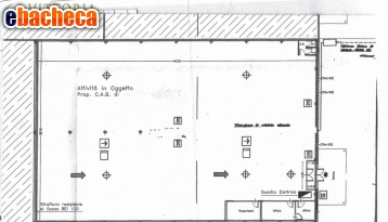Anteprima Capannone artig. 167 Nord
