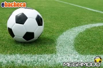 Anteprima Servizi campionati calcio