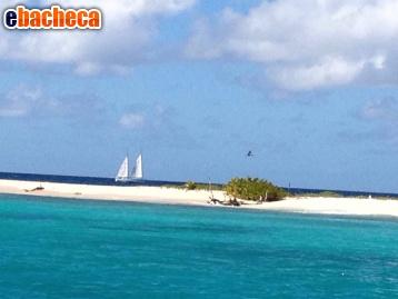 Anteprima Vela ai Caraibi