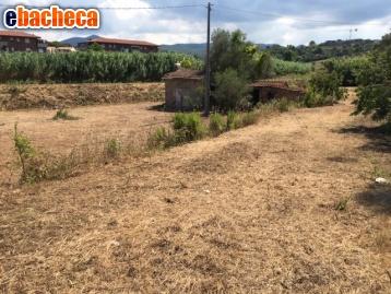Anteprima Agricolo a Livorno