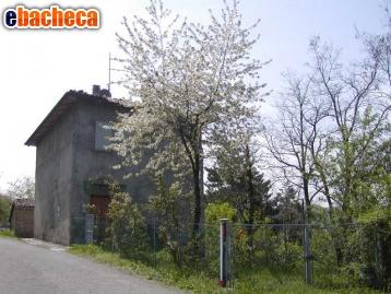 Anteprima Zocca rustico  rif.zov207