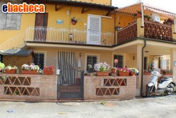 Anteprima Appartamento a Capannori