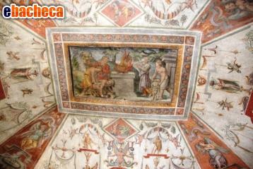 Anteprima Orvieto affittasi…