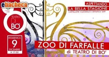 Anteprima Zoo Di Farfalle