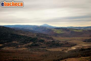 Anteprima Castel Viscardo…
