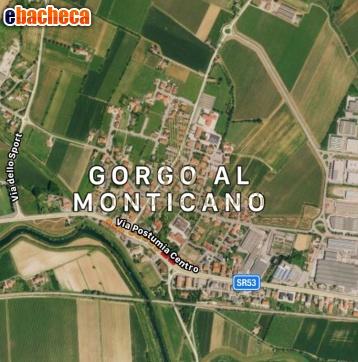 Anteprima Stabile/Palazzo a Gorgo…