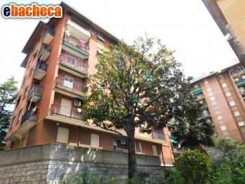 Anteprima App. a Genova di 63 mq
