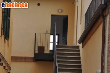 Anteprima App.Castelnuovo Berardenga
